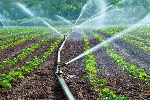 توسعه بخش کشاورزی زمینه ساز تحقق اقتصاد مقاومتی در کشور است