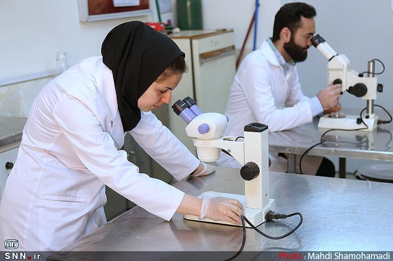 اجرای 10 طرح مشترک بین محققان ایرانی و چینی در امسال ، 12 دانشگاه برتر در برنامه پسا دکتری ویژه همکاری می نمایند