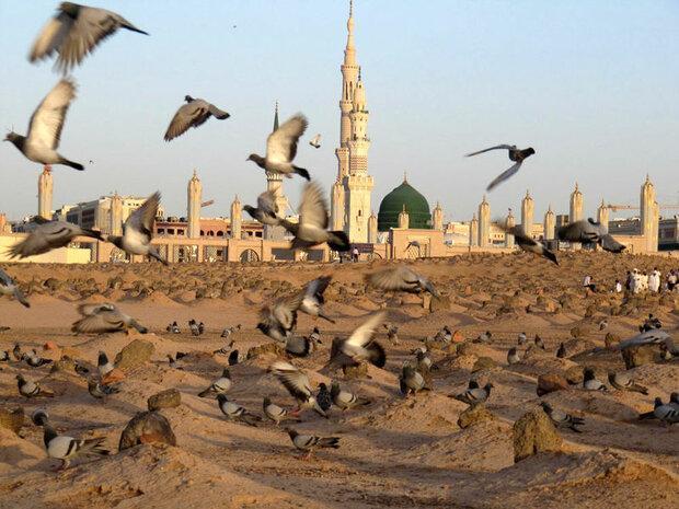عربستان سعودی باید قبرستان بقیع را بازسازی کند